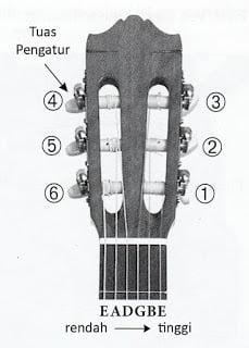 Tuas gitar